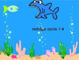 peces rodrigo